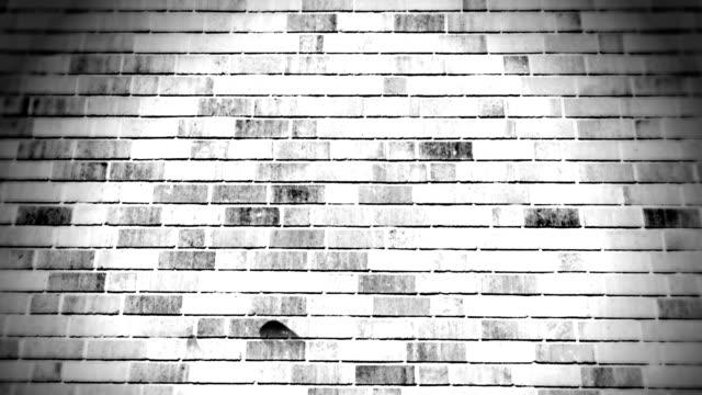film countdown-projektion. hd - ziegelmauer stock-videos und b-roll-filmmaterial