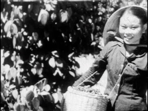 film from north vietnam depicting civilian life and armed conflict during the vietnam war - guerra del vietnam video stock e b–roll