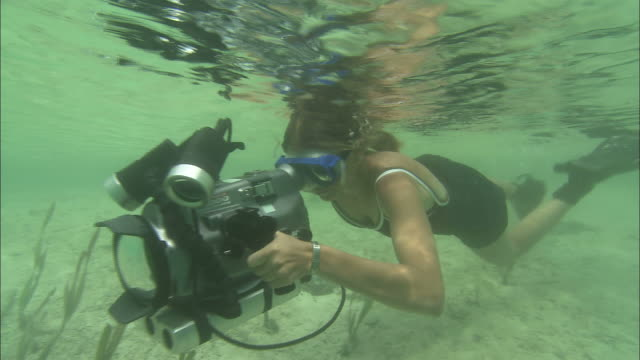 a film maker swims underwater with a large camera. - underwater film camera stock videos & royalty-free footage