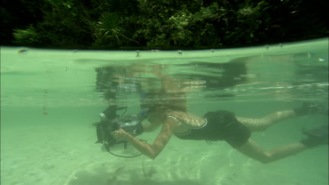 a film maker swims with an underwater camera off the shore of palau. - underwater film camera stock videos & royalty-free footage