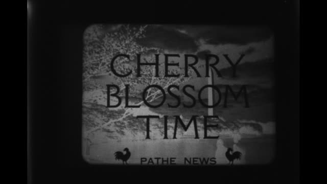 film negative running / explosions / film title cherry blossom time / negative of washington dc and cherry trees / cadets marching / beauty pageant... - film reel stock videos & royalty-free footage