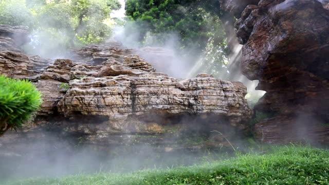 HD de inclinación: naturaleza árbol y vista al jardín