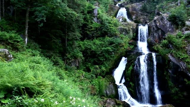 Neigung zu Filmen: tropischer Wasserfall im Wald Triberger Wasserfall Deutschland