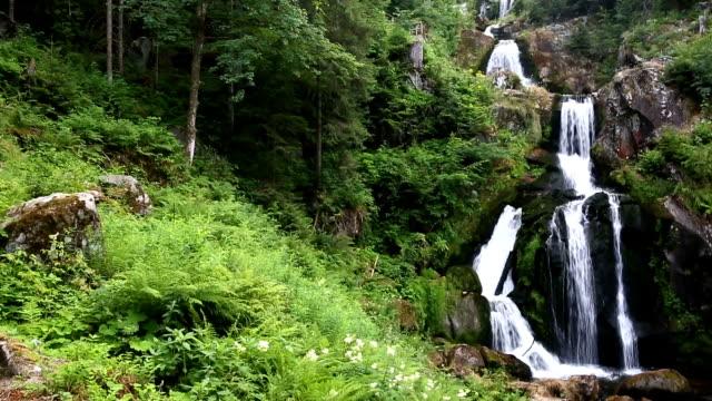 neigung zu filmen: tropischer wasserfall im wald triberger wasserfall deutschland - naturpark stock-videos und b-roll-filmmaterial