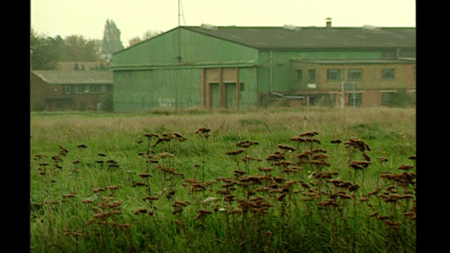 Warner Bros Studios Leavesden opens T06119511 / TX Cow parsley growing in field PULL OUT old airport buildings behind Control tower