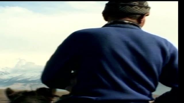 'borat cultural learnings' kazakhstan ext horsemen riding away man holding eagle - borat stock-videos und b-roll-filmmaterial