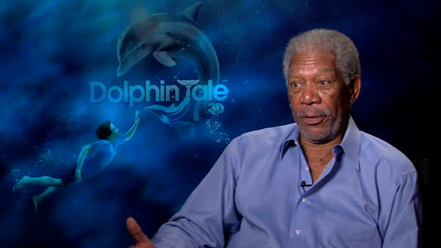 'dolphin tale' film junket interview with morgan freeman england london int morgan freeman interview sot on being upstaged by a dolphin intelligent... - fare video stock e b–roll