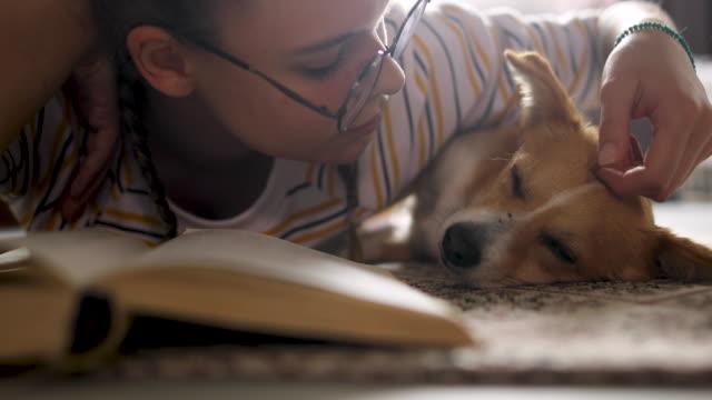 stockvideo's en b-roll-footage met eindelijk alleen thuis in de buurt van hond en boek - leesbril
