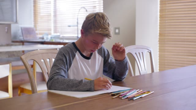vidéos et rushes de trouvez des styles d'apprentissage qui leur permettent de réussir - étudier
