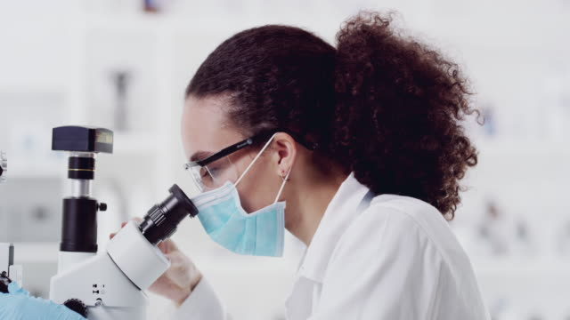 finding the cure - biochemistry stock videos & royalty-free footage