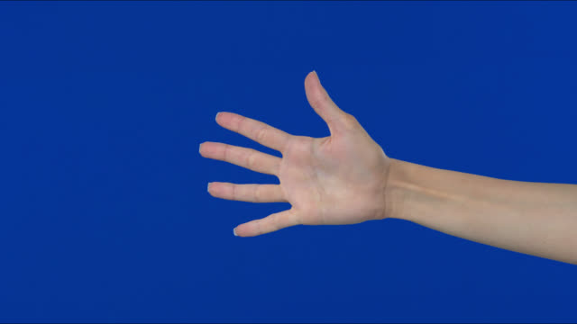 finger gestures of human hand showing count. - human finger stock videos & royalty-free footage