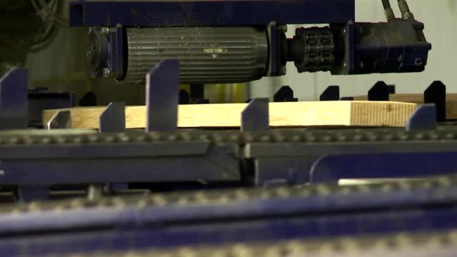 finger jointing linie in sawmill - menschliches gelenk stock-videos und b-roll-filmmaterial