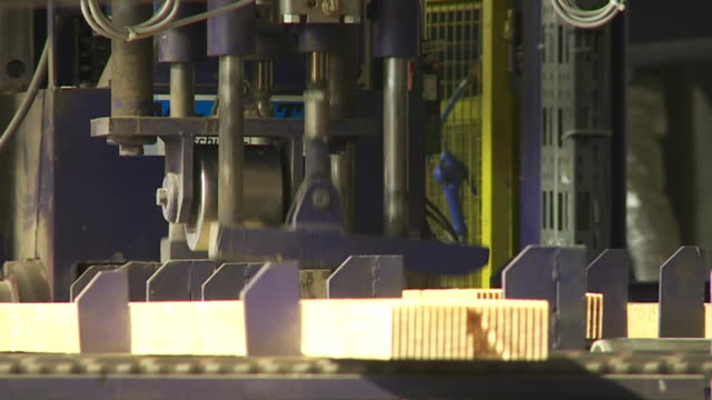 cu finger jointing line in a sawmill - spruce stock videos & royalty-free footage