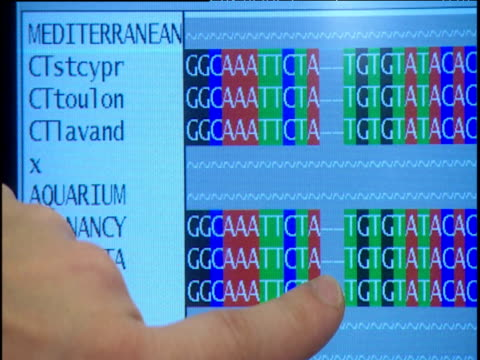 finger pointing at dna sequences on screen - dna鑑定点の映像素材/bロール