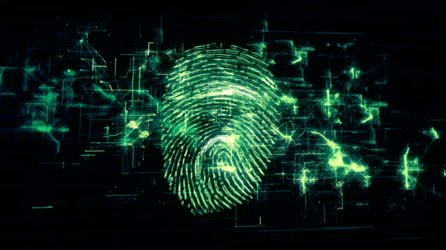 4k fingerprint identification - identity stock videos & royalty-free footage
