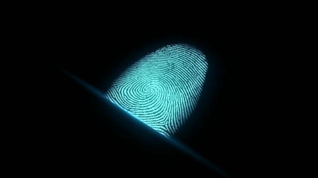 4k fingerprint identification - identity stock videos & royalty-free footage