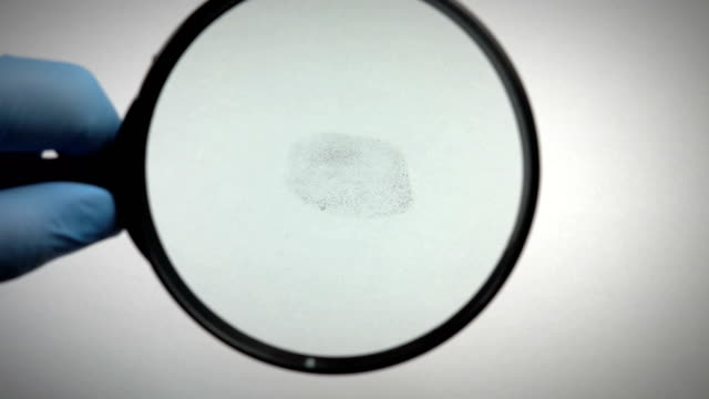 fingerprint magnifying - forensic science stock videos & royalty-free footage