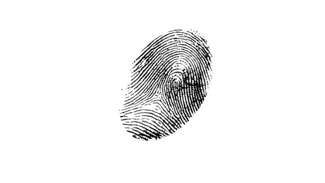 fingerptint zoom. - fingerprint stock videos & royalty-free footage