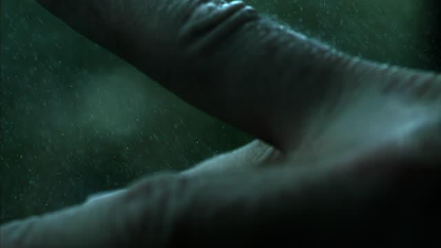 Fingers Feeling The Rain In Slow Motion