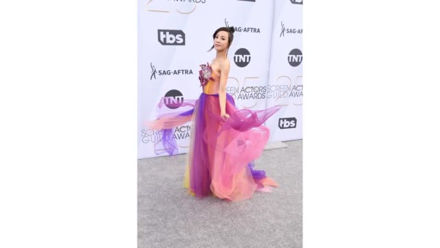 vídeos y material grabado en eventos de stock de fiona xie attends the 25th annual screen actors guild awards at the shrine auditorium on january 27 2019 in los angeles california - formato de archivo gif