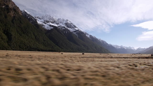 fiordland landscape seen from the car window - car point of view stock videos & royalty-free footage