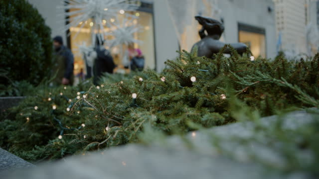 Fir tree in foreground crowd in background Christmas