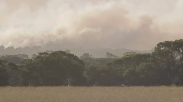 fire and smoke on kangaroo island in australia. - environment or natural disaster or climate change or earthquake or hurricane or extreme weather or oil spill or volcano or tornado or flooding stock videos & royalty-free footage
