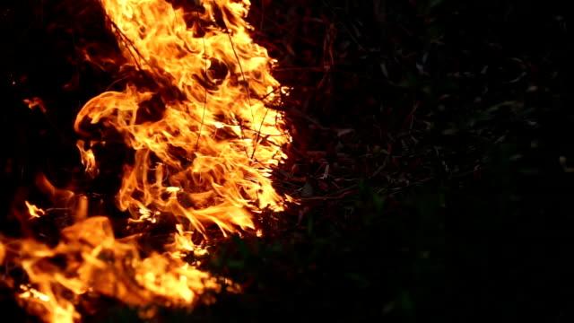 火災夜の - 可燃性点の映像素材/bロール