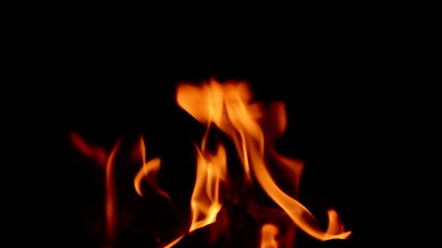 燃え盛る暖炉の火 - カバノキ点の映像素材/bロール