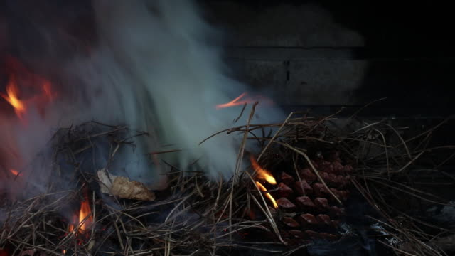 fire burning in fire pit - nadel pflanzenbestandteile stock-videos und b-roll-filmmaterial