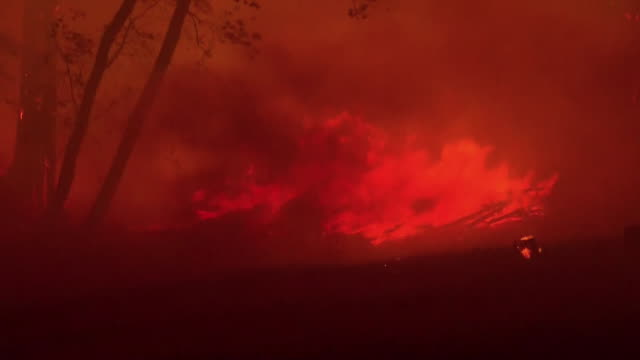fire burning trees and brush in napa, california, part of the 2017 fires in northern california that killed many in sonoma, mendocino, napa and yuba... - produced segment stock videos & royalty-free footage