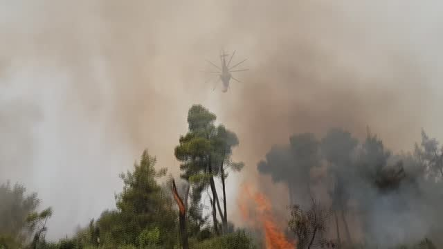 fire continued to burn through the forest of euboea island in eastern greece on thursday , despite persistent efforts to contain the blaze.... - greece stock videos & royalty-free footage