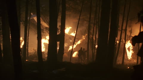 stockvideo's en b-roll-footage met ws pov  fire fighters in woods trying to extinguish  fire from  plane crash / unspecified - reddingswerker