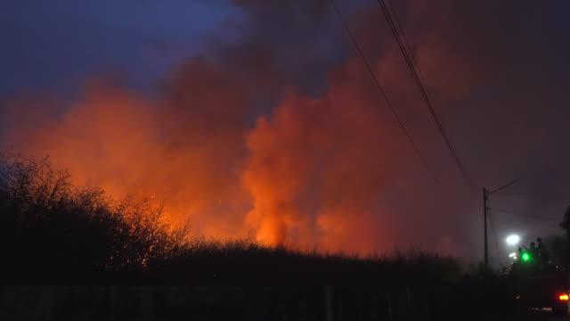 vidéos et rushes de incendie dans le parc - brasier