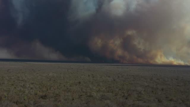 vídeos de stock, filmes e b-roll de fogo na floresta, árvores queimadas e grama. incêndios naturais - acidentes e desastres