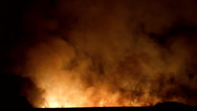 brand i naturen, natur katastrof, ånga, rök och partiklar, miljö skador, belyst, fara, kaos, kris - brandman bildbanksvideor och videomaterial från bakom kulisserna