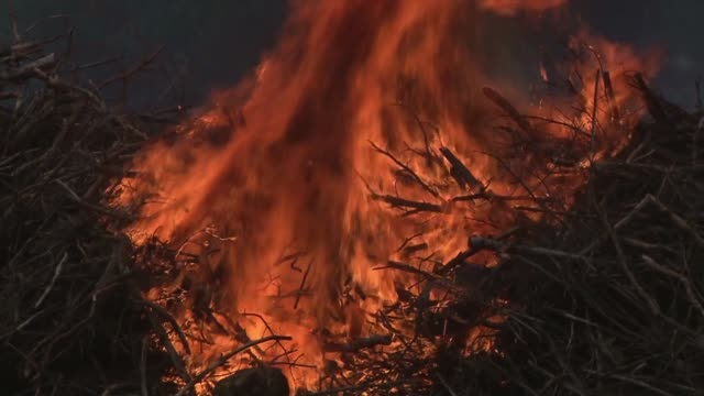 fire - 小枝点の映像素材/bロール