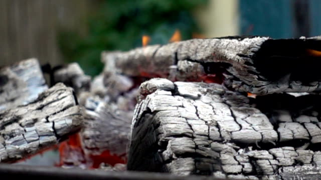 vídeos de stock, filmes e b-roll de fogo - firewood