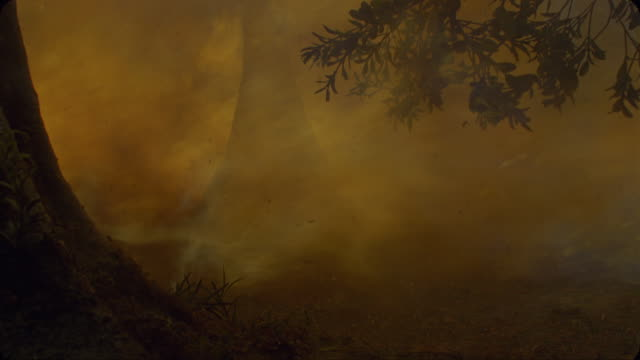 A fireball blasts through a forest as dinosaurs flee in a computer generated animation.