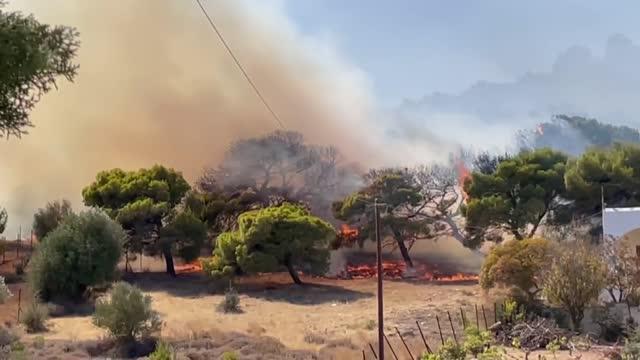 vídeos de stock, filmes e b-roll de firebroke out in markati village of keratea regionnear athens, greece on august 16, 2021. - grécia