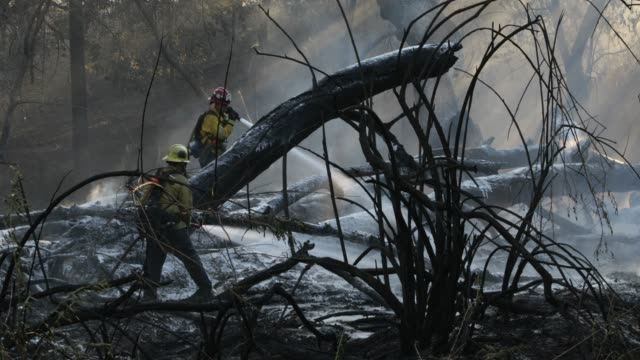 firefighter putting out amber - california stock videos & royalty-free footage
