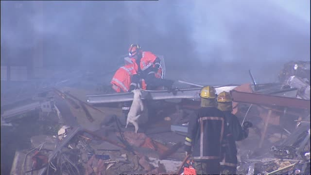 Firefighter rescue workers with dogs at night attempting to search for survivors at the site of the collapsed Canterbury Television Building
