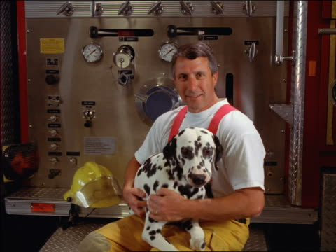 ms portrait firefighter sitting on fire truck petting dalmatian on his lap - dalmatian dog stock videos and b-roll footage