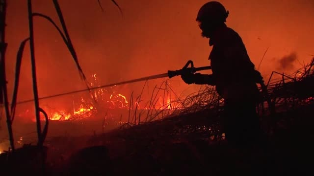 firefighters aided by calmer winds were gaining control of wildfires raging across drought hit portugal but warned the fire danger remained high in... - portugal stock videos & royalty-free footage