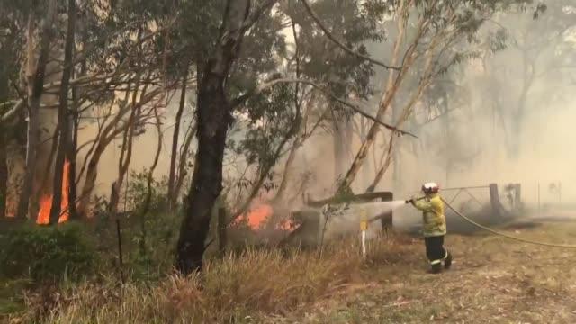 stockvideo's en b-roll-footage met firefighters battle bushfires north of sydney - sydney australië