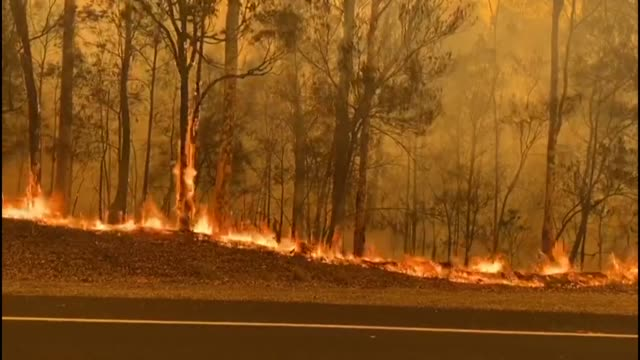 firefighters battle flames in moruya in new south wales australia - firefighter stock videos & royalty-free footage
