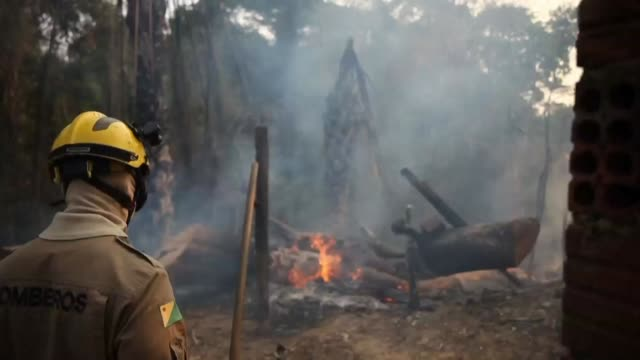 vídeos de stock e filmes b-roll de firefighters combat wildfires in brazil's amazon forest in the region of rio branco in acre state - amazonas state brazil