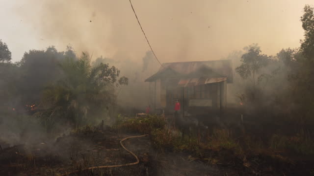 firefighters extinguish the fire on burned house and fields on september 13 2019 in pulang pisau regency central kalimantan indonesia - kalimantan stock videos and b-roll footage