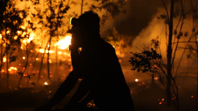 firefighters extinguish the fire on burned peatland and forest at sebangau national park on september 14 2019 in the outskirts of palangkaraya... - kalimantan stock videos and b-roll footage