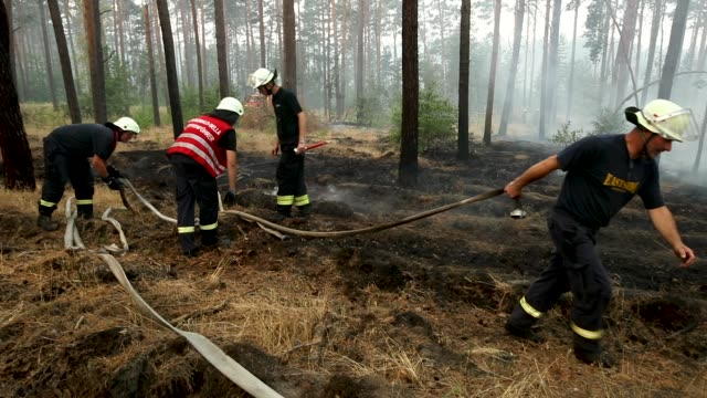 Firefighters extiniguish flames in a section of burning forest in southern Brandenburg state on August 24 2018 near Klausdorf Germany A fire covering...